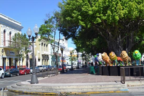 Plaza of Delights (Plaza de las Delicias): View of the Plaza