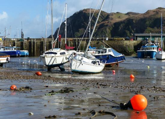 The Royal Britannia: Ilfracombe harbour, directly in front of the hotel
