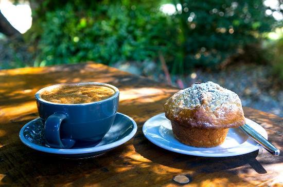 Beechwoods Cafe: Cuppa
