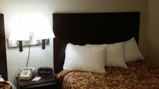 Econo Lodge: Newly remodeled nice bed