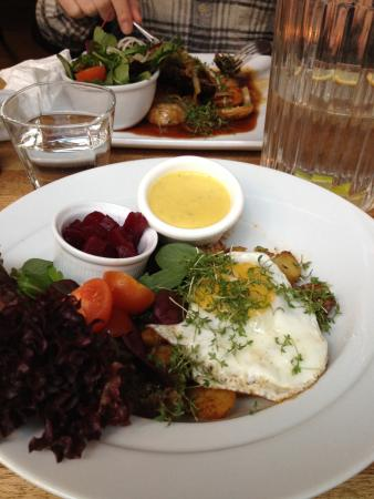 Cafe Katz: Danish recommendations