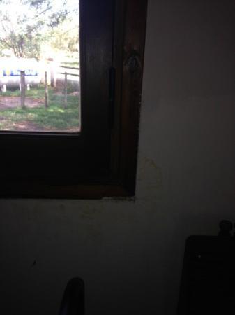Cabanas Don Rene: habitacion humedad y sin cortinas