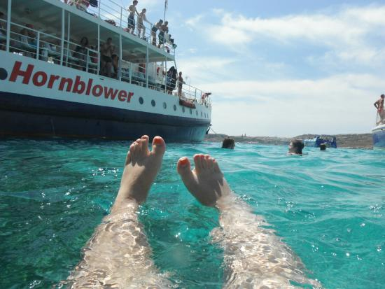 Hornblower Cruises: snorkelling off the Hornblower in the Blue Lagoon