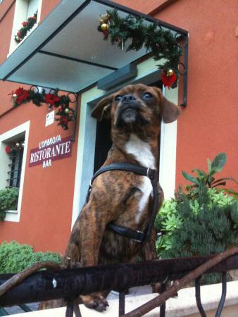 L'Ombrosa Hotel : Che.....dire.....la foto dice.....tutto....👍👍👍👍👍👍👍👍👍👍👍👍👍👍👍👍👍👍👍