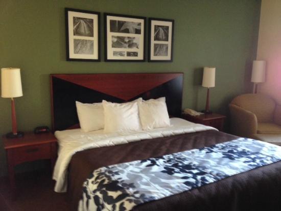Holiday Inn Express & Suites Fleming Island: King Standard