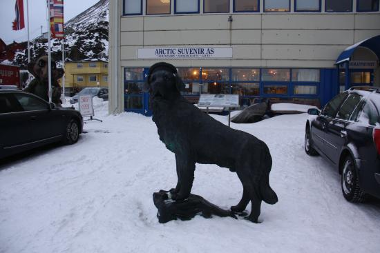 Nordkappmuseet: Faithful dog with facinating story