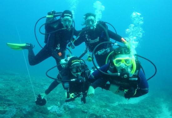 Dive locations picture of scuba diving black pearl - Padi dive locations ...