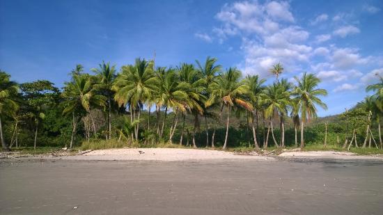 Casas de Soleil: Playa Carmen - across the street