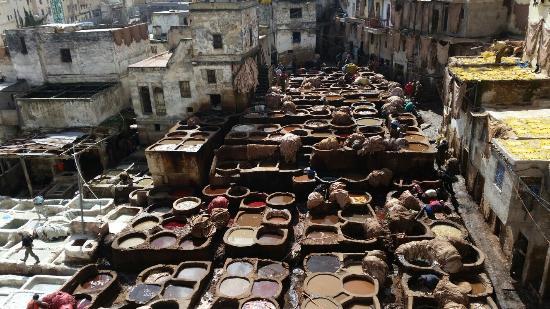 Rutas Por Marruecos Travel Services, S.a.r.l.: Curtidores fez