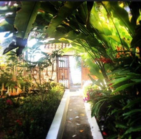Casa de los Monos: Gorgeous gardens!