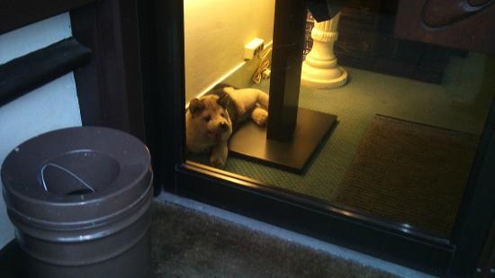 Hotel Verdi: el perrito guardián de la entrada (de peluche)