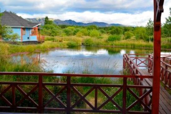 Spring Creek Lodge: Blick aus dem Esszimmer
