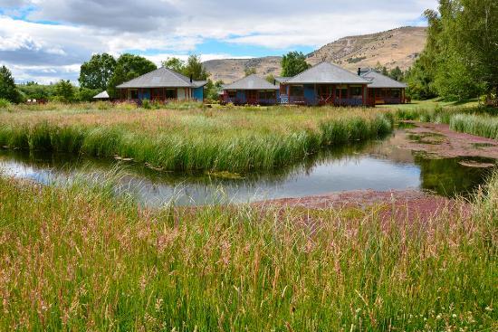 Spring Creek Lodge: Bungalows