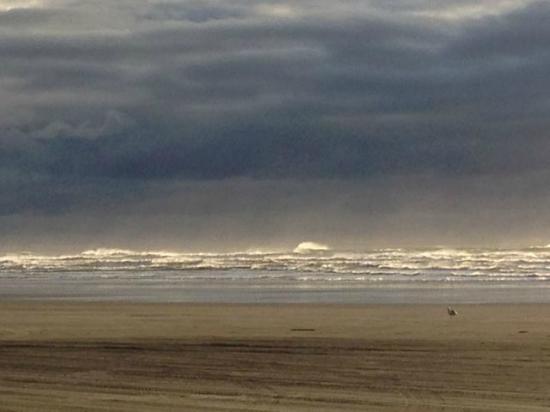 Ocean Shores, WA: On the beach