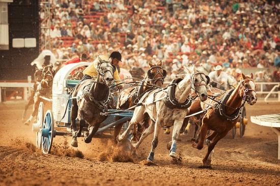 Gmc Rangeland Derby Picture Of Calgary Stampede Calgary