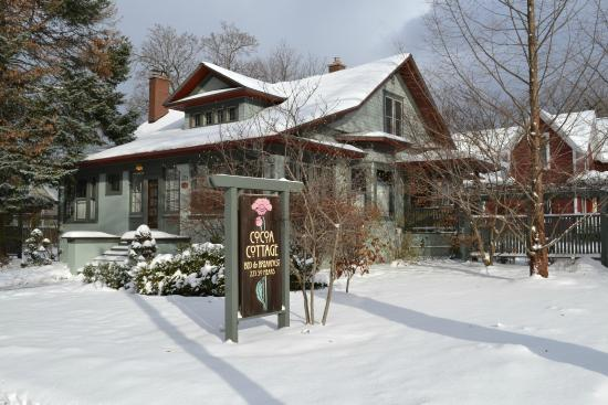 Cocoa Cottage Bed and Breakfast: Mother Nature at Winter's best!
