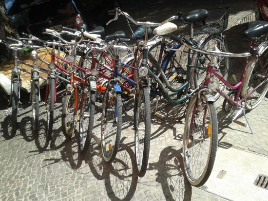 Rent a Bike 44