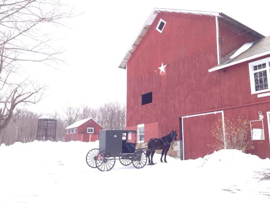 Penn Yan, NY: Weaver View Farm country store