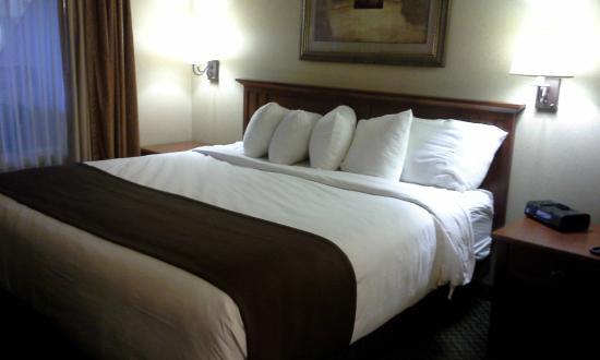 C'mon Inn - Fargo: Large King Bed