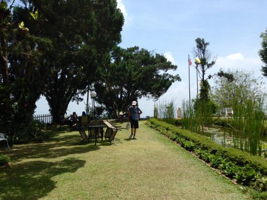 David Brown's Restaurant and Tea Terraces: Small garden