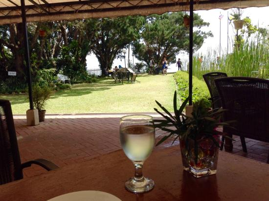 David Brown's Restaurant and Tea Terraces: View from our table