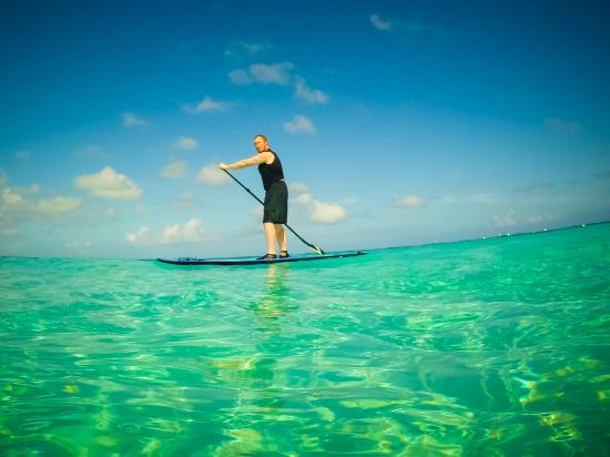 Reef Residences on Grace Bay: The staff helped us rent a paddle board.