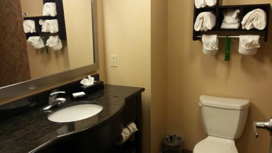 Hampton Inn & Suites Beach Boulevard/Mayo Clinic Area: Vanity