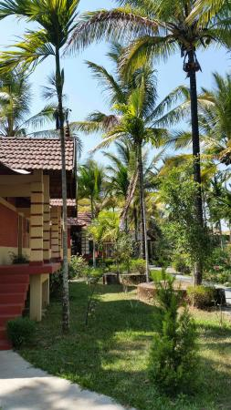 Wayanad Nature Resorts: beautiful garden, resort grounds