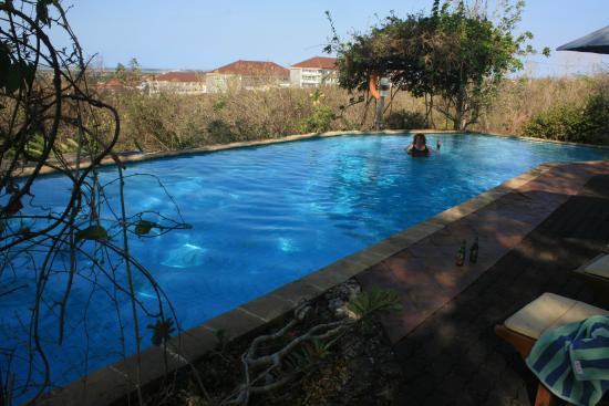 Udayana Kingfisher Eco Lodge: scene over pool toward the bay.