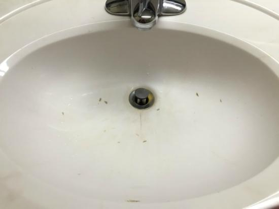 Country Inn & Suites By Carlson, Chattanooga I-24 West: Burn marks in sink