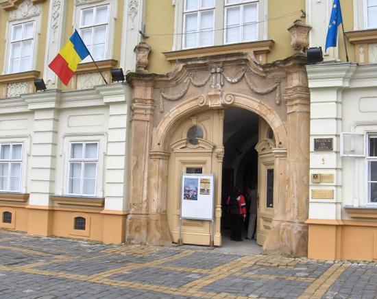 Muzeul de Arta: The Baroque Palace / The Art Museum - entrance gate