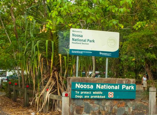 Noosa, Australien: Car park and entry