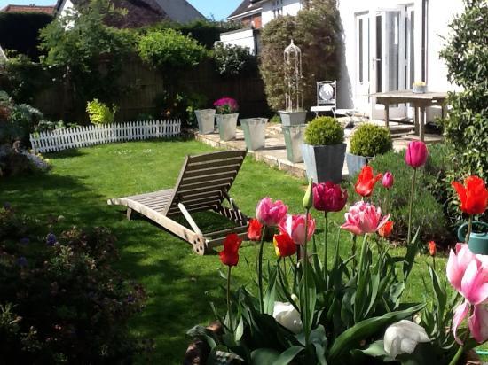Spring Cottage Bed & Breakfast: The garden