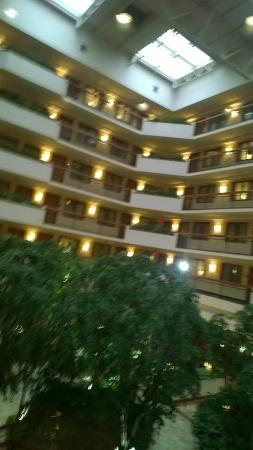 Embassy Suites by Hilton Austin Arboretum: view from room 204