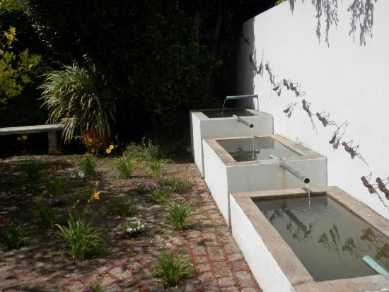 Water Feature And Lizard Wall Outside