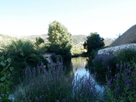 camino para acceder - Picture of Pileta Caves (Cueva de la Pileta), Benaojan ...