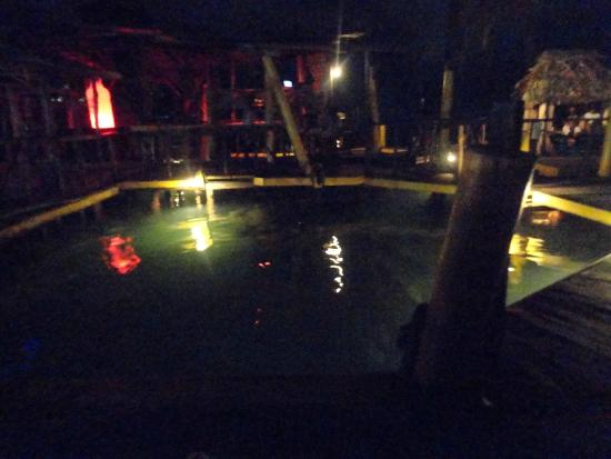 Barco Hundido Bar