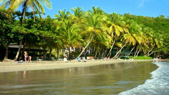 La Sagesse Hotel, Restaurant & Beach Bar : the tropical setting is photogenic