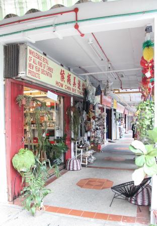 Shop by The Monocot Studio