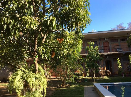 Hotel Leon Viejo: the pool area