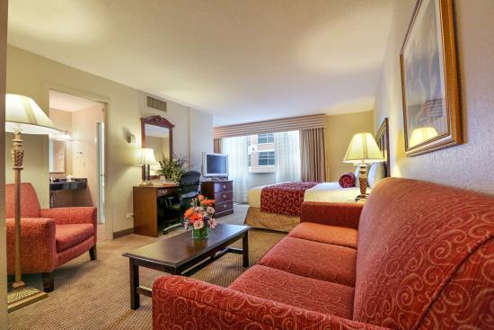 Regency Suites: King Suite