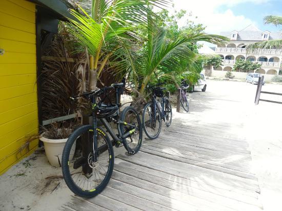 Simpson Bay (ทะเลสาบซิมป์สัน เบย์), เซนต์มาร์ติน / ซินท์มาร์เทิน: our bikes
