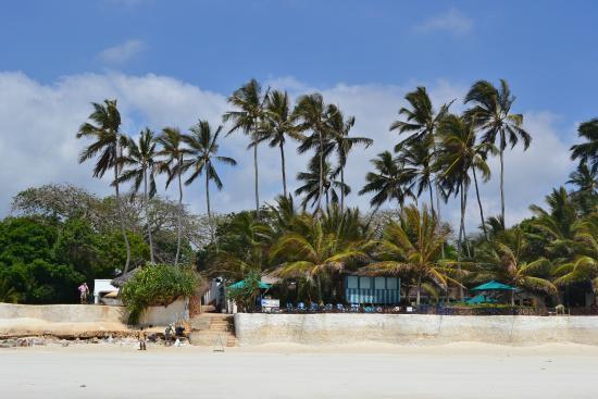 Diani Beach, Kenya: palemki