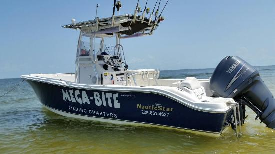 ‪Mega-Bite Fishing Charters, LLC‬