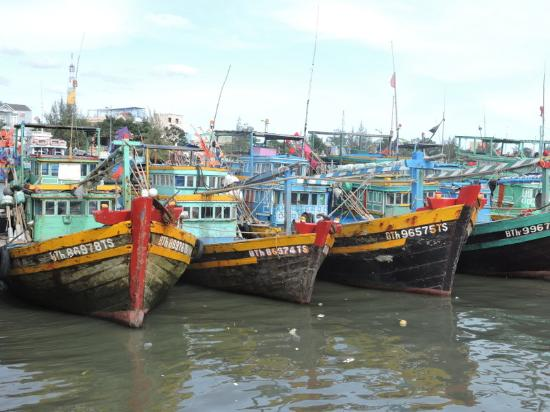 Green Organic Villas : Colourful fishing boats