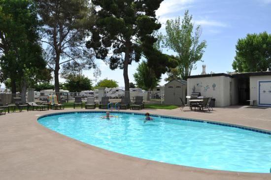 pool area foto di thousand trails las vegas rv resort. Black Bedroom Furniture Sets. Home Design Ideas