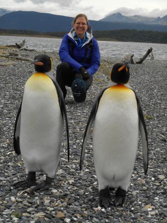 Canal de Beagle et promenade avec des pingouins (hiver) : A Pair of Kings!