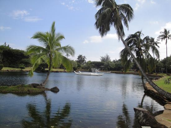 Beautiful Ponds Gardens Picture Of Smiths Tropical Paradise