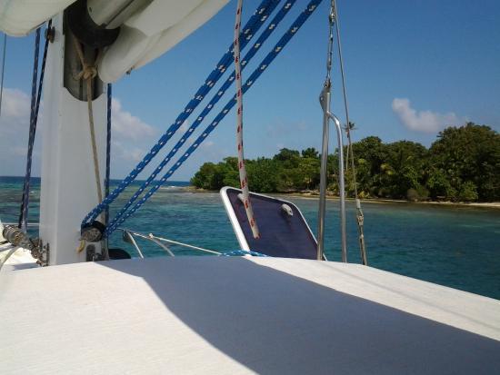 Daytripper Catamaran Charters: Snorkel spot