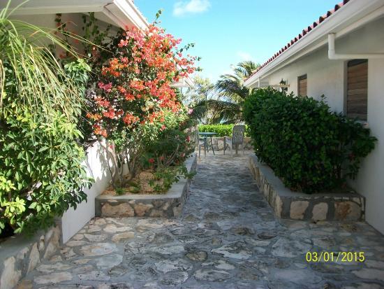 Harbour Club Villas & Marina: Outside